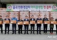 합천 겨울시설재배 친환경감자, '아이쿱 생협'에 첫 출하