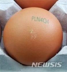 인천시, 산란일자 표시 등 '계란 안정성 검사' 강화