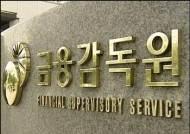 금감원, 정치인 계좌 불법조회 혐의 신한은행 특별검사