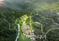고흥 팔영산에 국내 최대규모 '편백 치유의 숲' 조성