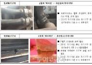 인천 월미도 유원시설 안전 상태 '빨간불', 개선필요 54건