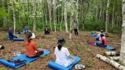 국립청태산 자연휴양림, '6일간의 숲 치유' 프로그램 진행
