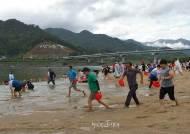 하동 섬진강문화 재첩축제 '성료'...체험·힐링·동서화합 문화축제로 자리매김
