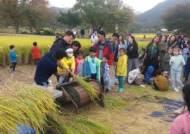 아산 외암민속마을 짚풀문화제, 10월 12일 개막
