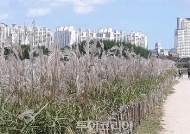 힐링과 기부가 함께하는 울산태화강 전국걷기대회 20~21일 열려