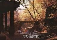 산지승원에서 만끽하는 가을, 순천 선암사 VS 해남 대흥사