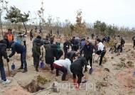 1004섬 신안, 나무심기 행사 15일 개최