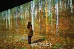 제주 '빛의벙커' 인기몰이···클림트 황금빛 그림과 함께 인생사진 남겨볼까