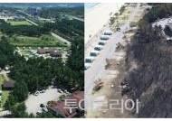 강원도 산불 피해 조기 정성화 위해 관광업계 나선다!