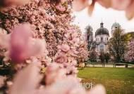 꽃놀이하며 인생샷 찰칵 '잘츠부르크'!