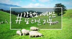 한국관광공사, 강원 산불피해 극복 봄 여행주간 프로그램 마련