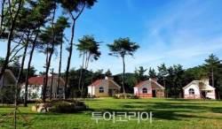 국립자연휴양림 여름 성수기 추첨 신청 27일부터!