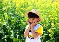 싱그러운 노랑에 물들어 '찰칵'! 주말 가볼만한 유채꽃밭 5