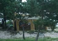 핑클처럼 캠핑여행 떠날까! '캠핑클럽'인기에 카라반 이용문의 쇄도