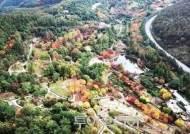 가을 정취 물씬 '경상북도수목원'에서 단풍놀이하며 힐링!