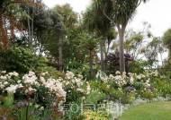 11월, 뉴질랜드 축제로 꽃구경하고 미식여행 즐겨요!