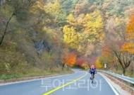 자전거·카약·낚시·트레킹 레포츠 즐기며 단양 가을 비경 온 몸으로 느껴봐!