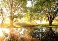 국립생태원, '민간 전문 습지조사원' 모집