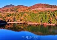[포토] 여수 봉화산 삼림욕장 산책하며 늦가을정취 만끽!