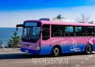 '영덕 블루시티 버스' 12월 본격 운행..기차·버스타고 영덕여행!