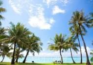 새해, 괌·사이판·크루즈여행 특가에 떠나볼까!