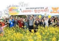 다가오는 봄엔 '청산도 슬로걷기 축제'!...4월 4일부터 32일간 열려