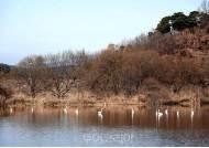 '창녕 우포늪 환경부 생태관광지역 3회 연속 지정