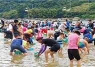 '하동섬진강문화재첩축제' 2020·2021예비문화관광축제 지정
