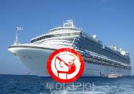일본 크루즈 선내 한국인 귀국 위해 대통령전용기 띄운다!