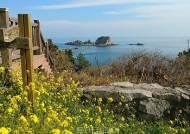 [포토] 노란 유채꽃과 쪽빛바다 힐링! 여수 거문도에 찾아온 봄!