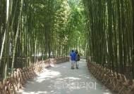 울산 태화강 국가정원 은하수길 단절 구간 100m 연결