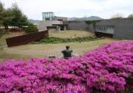 양구 문화관광시설 휴관 19일까지 2주 추가 연장