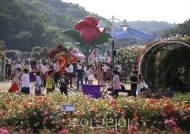울산 장미·봄꽃축제 내년에 만나요!
