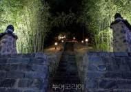 대전 선사유적지 대나무숲 야경 정취 즐겨요!