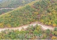 강화 혈구산 숲길·임도 트레킹 코스 조성..10월 완공 예정