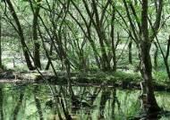 정읍 월영습지·솔티숲, 道생태관광지 최우수 '평가'