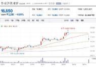 [특징주]롯데관광개발,거래재개 첫날 '철퍼덕'...11.90% '급락'