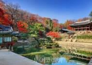 10월말 11월초 단풍 절정, 도심 속 단풍 나들이 '궁궐·왕릉'으로