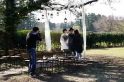 팰롱팰롱 오월 제주, 로맨틱 아일랜드 리마인드 웨딩 & 귤꽃 카페의 맛과 향
