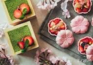 호시노 리조트, 올봄 완벽한 벚꽃 여행을 완성할 숙소 추천