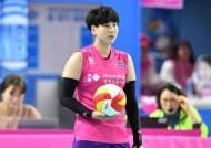 프로배구 흥국생명, FA 레프트 신연경과 연봉 1억원에 계약