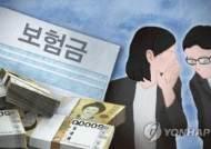 """작년 보험사기 7천982억원 또 사상최대…""""조직·대형화"""""""