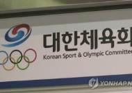 대한체육회, 도쿄올림픽 선수단장 회의서 독도 표기 시정 요구