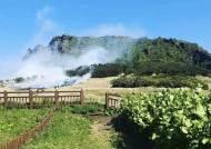 [2보] 제주 성산일출봉 잔디광장 화재…오름능선으로 불 확산