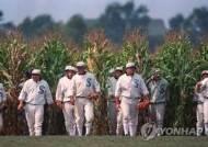 MLB '꿈의 구장' 매치, 화이트삭스-카디널스전으로 변경 추진