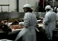 """미국서 광우병 소 발견…""""쇠고기 수출엔 영향없어"""""""