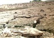 국내 최대 예당저수지도 풀밭으로…쩍쩍 갈라진 농심