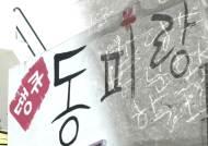 무단침입에 소음까지…한국의 몽마르뜨 '동피랑' 수난