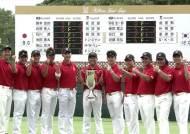 차·포 다 떼고 붙은 한국 남자 골프, 한·일 대항전 우승