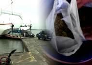 영화 '마파도' 인천에 진짜 있었다…섬에서 대마초 키워